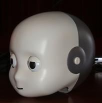 icub_head-k